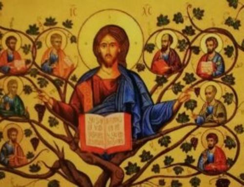 Lettera al termine della Settimana di Preghiera per l'unità dei cristiani!